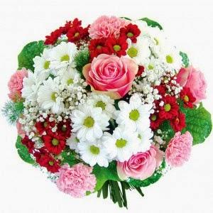 http://www.pocztakwiatowa.pl/kwiaty-dream/
