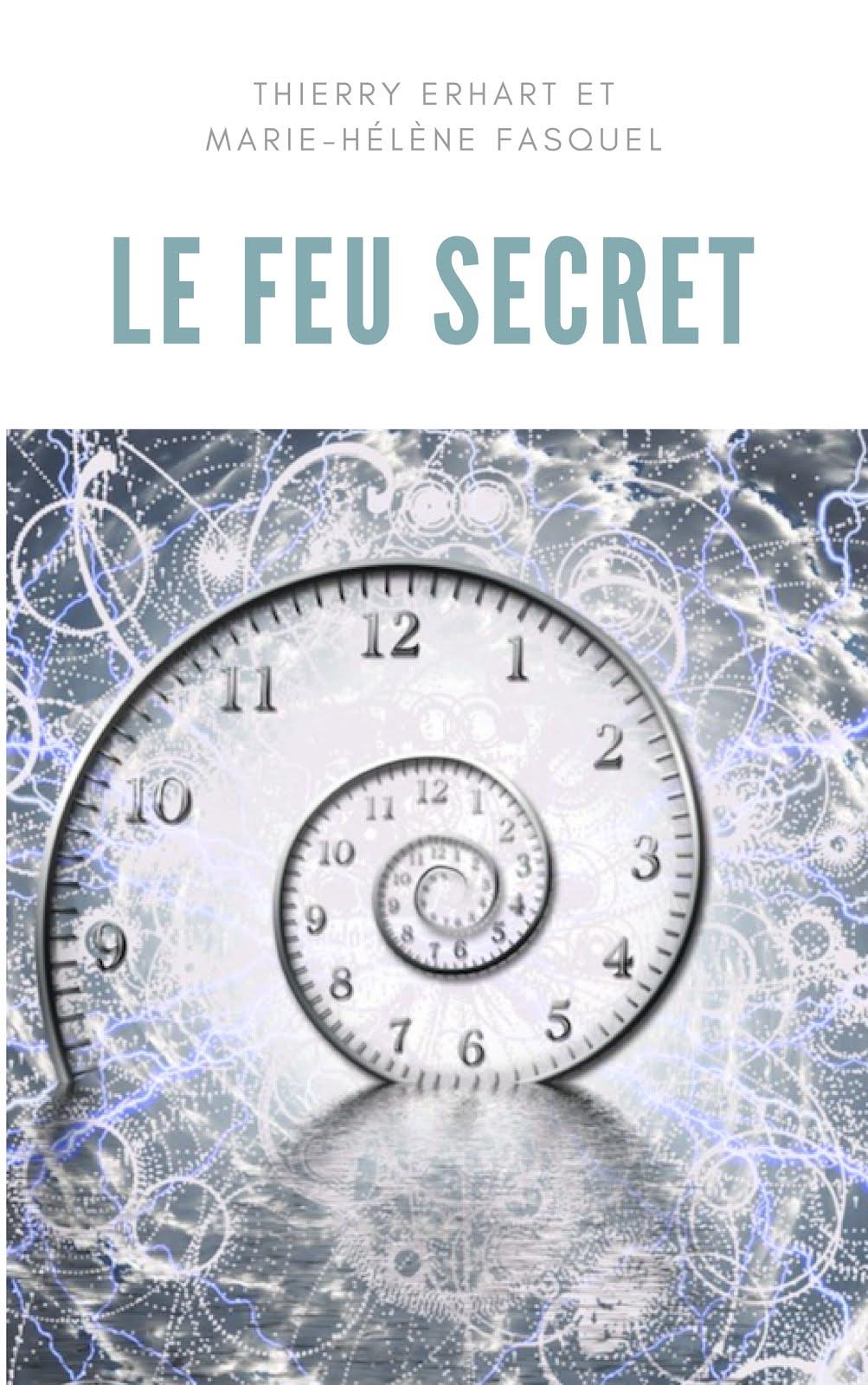 Parution le 21 janvier 2019 aux Editions Nouvelle Bibliothèque - Couverture Provisoire