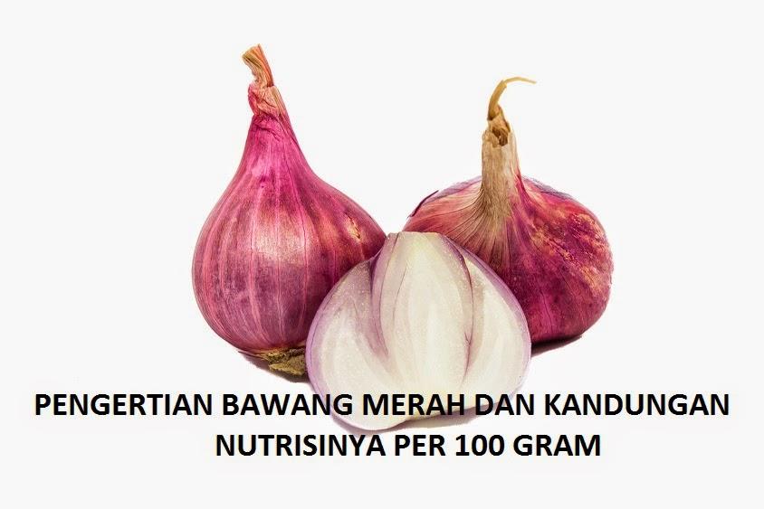 Pengertian Bawang Merah dan Kandungan Nutrisinya dalam 100 gram