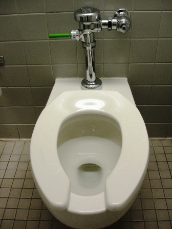 Commercial Toilets : Savarna: on hands and knees in public restroom... even worse than you ...