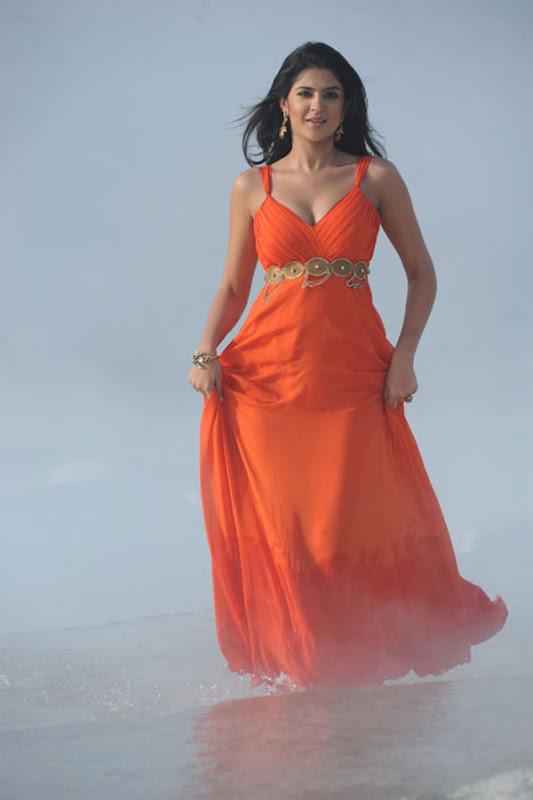 Deeksha Seth Movie Pics 7