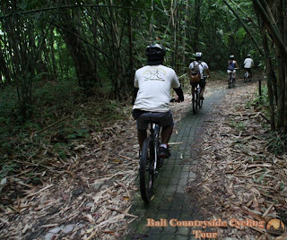 Photos Of Bamboo Forest Bali Countryside Cycling Tour Tracks - bike in bamboo forest