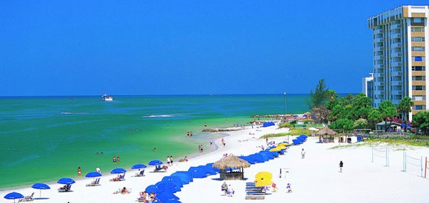 Dating in clearwater fl