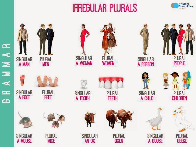 English with Leigh: Irregular plural nouns