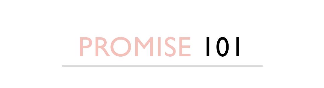 PROMISE 101