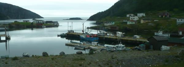 picture of fishing harbor in newfoundland canada