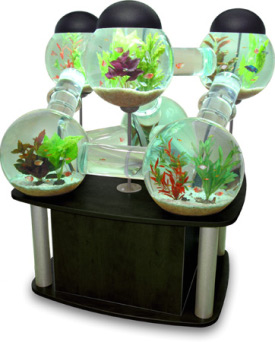 Creative Aquarium fish tank