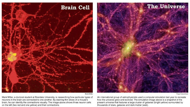 Universe Is A Giant Brain