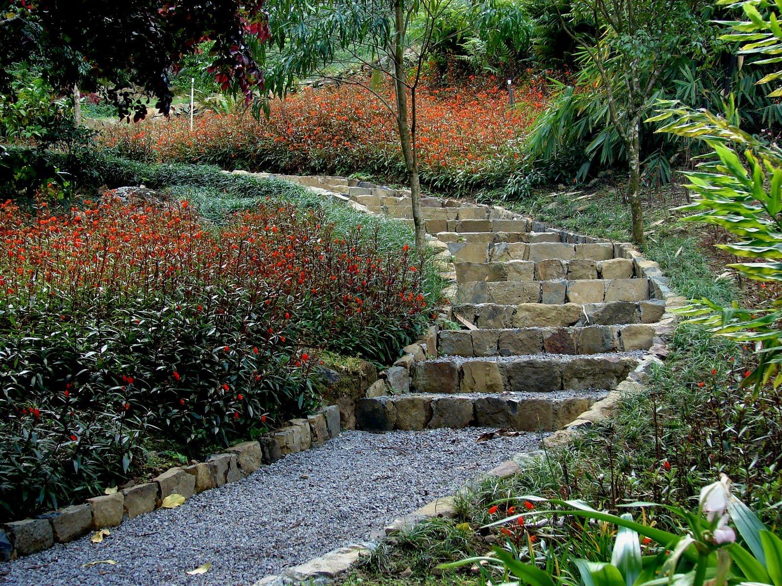Arte y jardiner a plantas tapizantes - Mantenimiento de un jardin ...