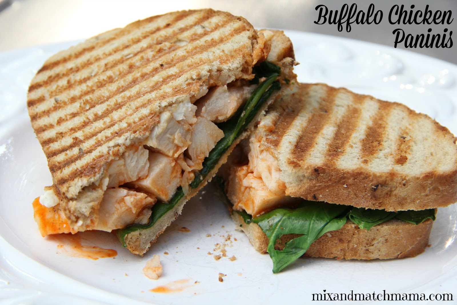 Red Chile Chicken Panini Recipe — Dishmaps