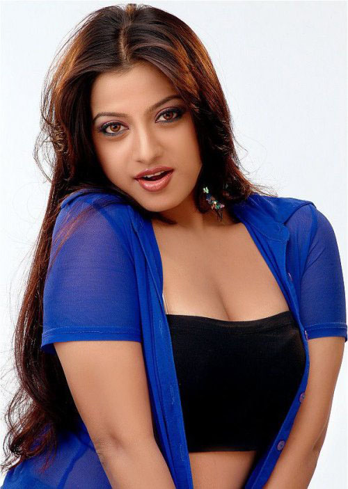 Keerthi chawla hot photos