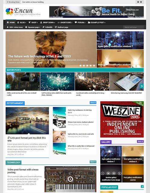 Free Download Encun brilliant magazine Wordpress Theme
