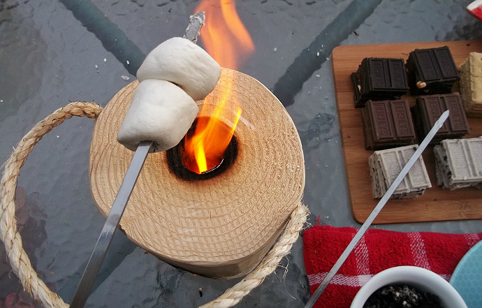 One Log Fire Smores