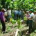 Gobierno invertirá S/. 3,000 millones en planes de desarrollo de Selva Central