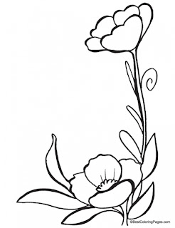 Poppy Flower Coloring Page Poppy Coloring Coloring Flowers Flower