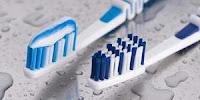 Rutin Sikat Gigi bisa Mencegah Plak