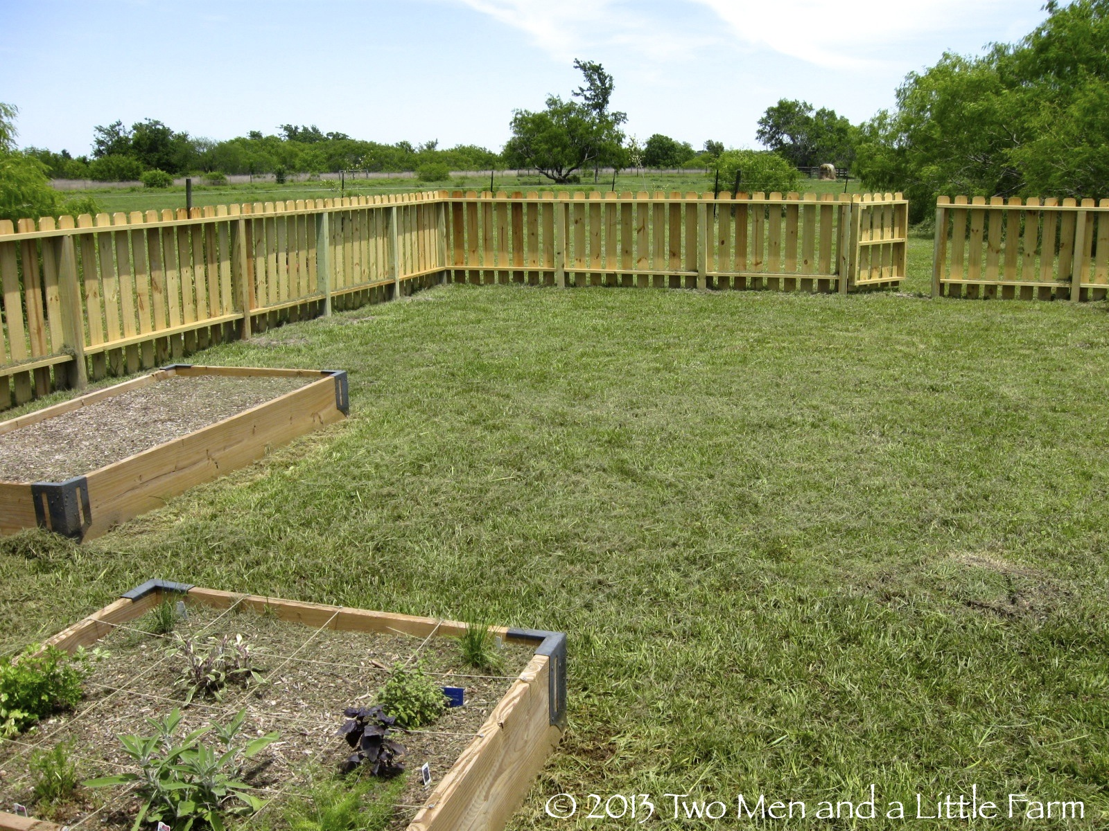 Two Men And A Little Farm Raised Bed Garden Fence Unveiling