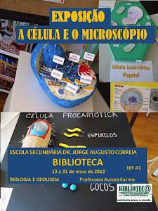 EXPOSIÇÃO «A Célula e o microscópio», 10.º A1