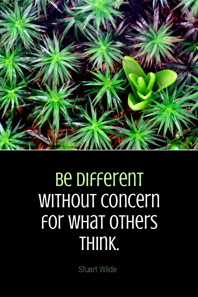 visual quote - image quotation for INDIVIDUALITY - Be different – without concern for what others think. - Stuart Wilde