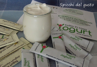 yogurt fatto in casa
