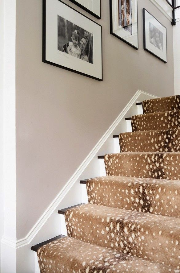 Daigle 39 s digs the 39 other 39 animal print for Leopard print wall to wall carpet