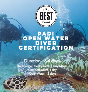 Get Certified, Become A Padi Open Water Diver