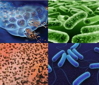 Plata Coloidal. Para Curar de Todo. Elaborar en casa Virus,Hongos,Bacterias+y+Moho