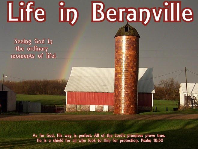 Life in Beranville
