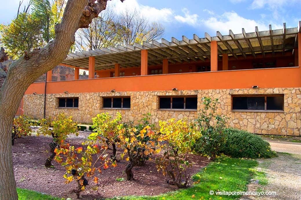 Museo del Vino D.O. Campo de Borja vitivinicultura vino Comarca Campo de Borja Comarca de Tarazona y el Moncayo Monasterio de Veruela