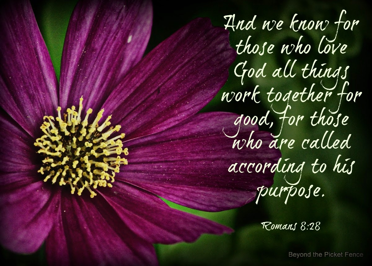 God's Word Inspiring verses http://bec4-beyondthepicketfence.blogspot.com/2014/06/sunday-verses_28.html