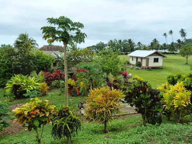 El món d\'en Quino: Fiji 2013: Capítulo 3