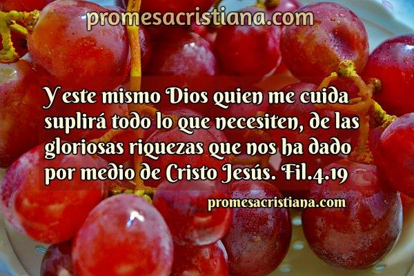 Frases cn versículos de provisión Dios provee, mensaje cristiano corto para compartir, Imagen con verso de la Biblia.