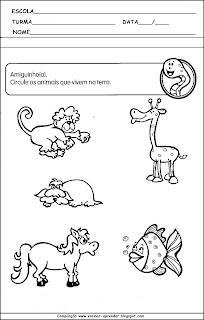 15 Atividades Sobre Animais