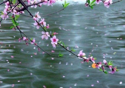 """家乡有句俗话""""立春一日,水暖三分"""