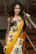 Lavanya Tripathi glam pics in saree-thumbnail-18
