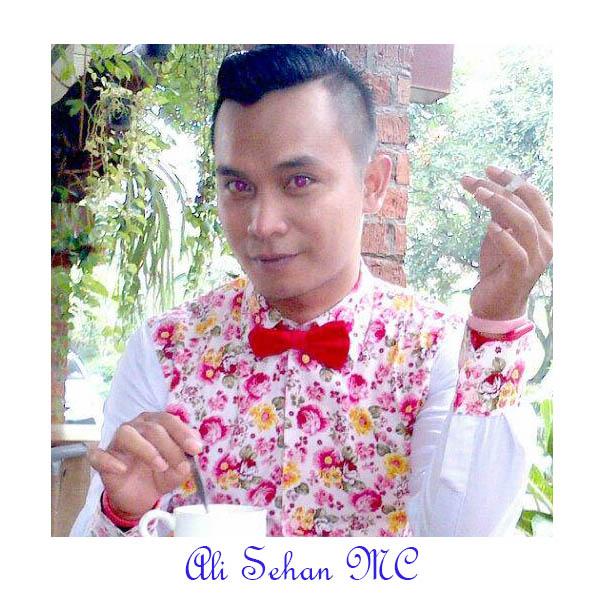 Mc Sehan
