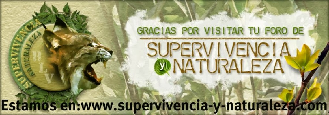 Ante todo, Supervivencia..... Spain-Survival