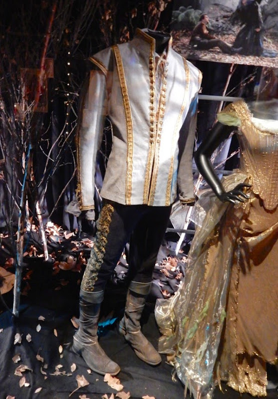 Cinderella's Prince movie costume Into the Woods