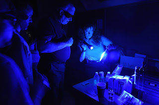 Ultraviolet light is used to detect fingerprints.