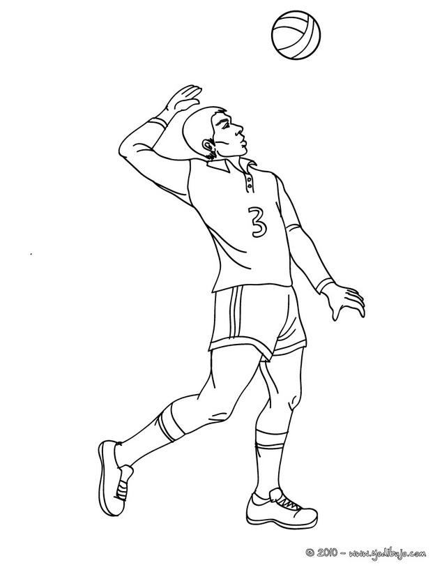 Voleibol Un Gran Deporte