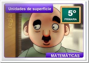 4. SUPERFICIE