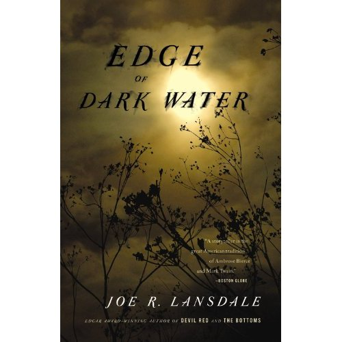 Edge of Dark Water Book Image