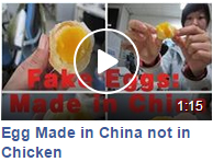 Fake Chicken Egg