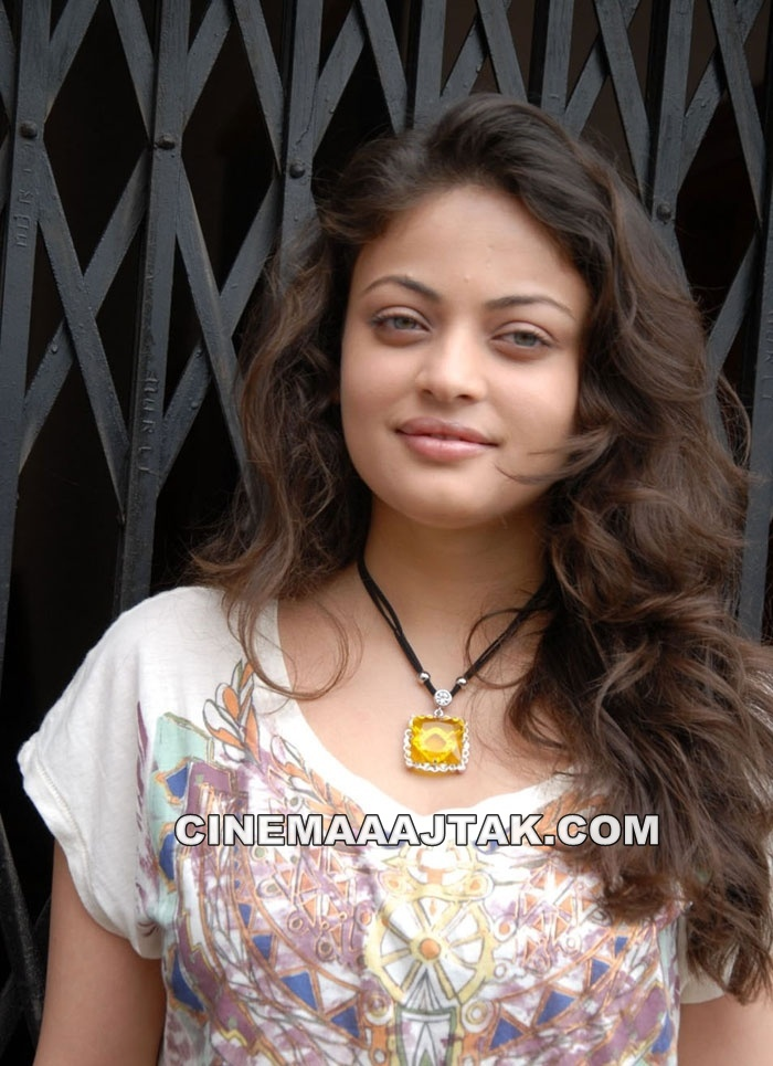 Sneha Ullal Looking Hot At Action With Entertainment Movie Press Meet