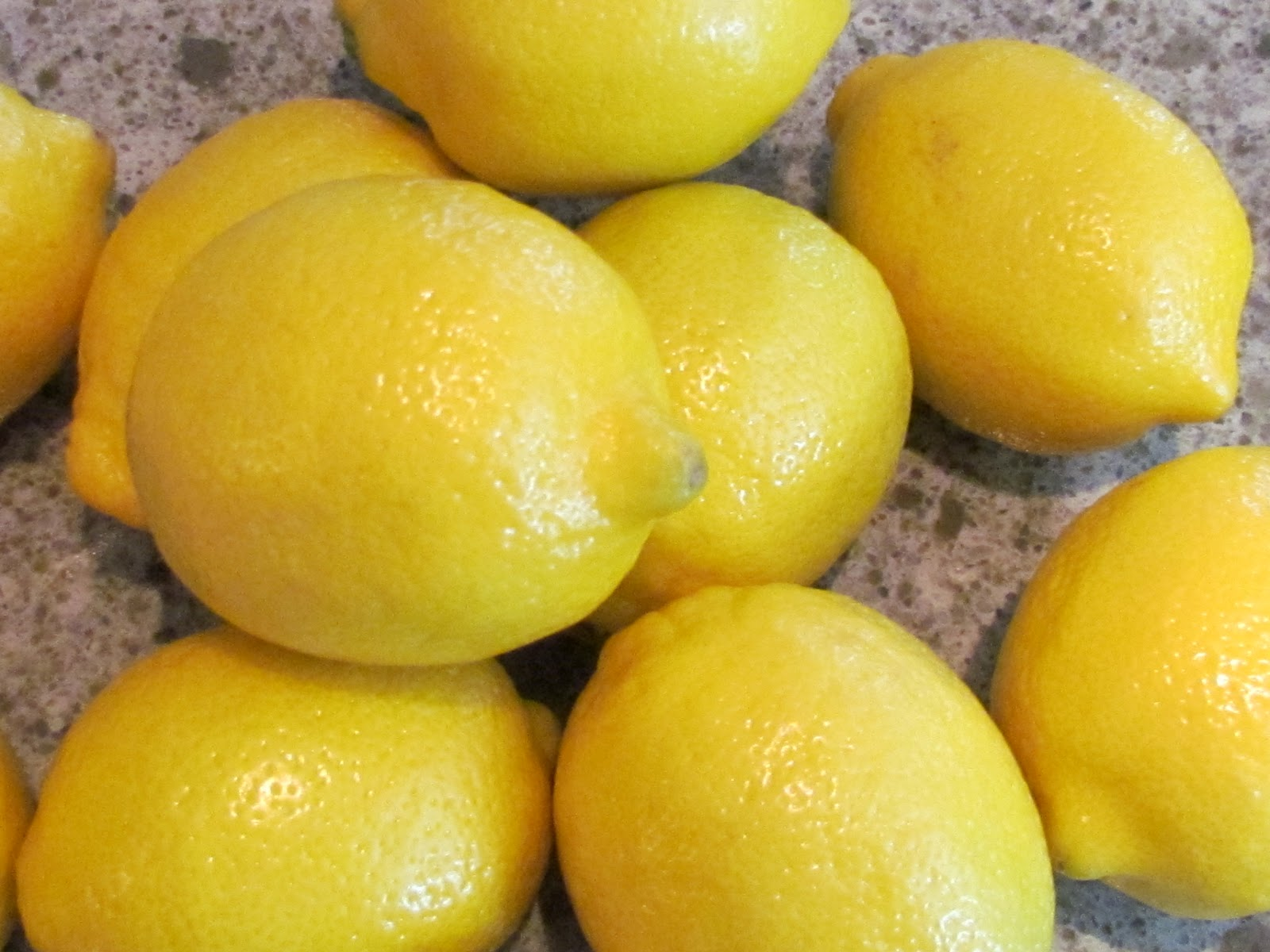 the Dam Jam Lemon Marmalade
