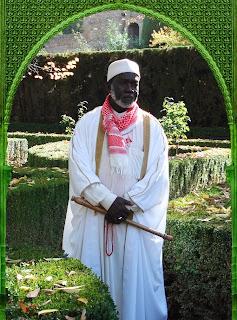 Sheikh Harun Rashid Faye, Guide