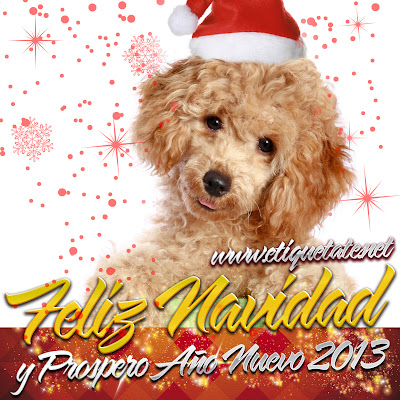 Cachorritos Navideños 2013 para descargar Gratis