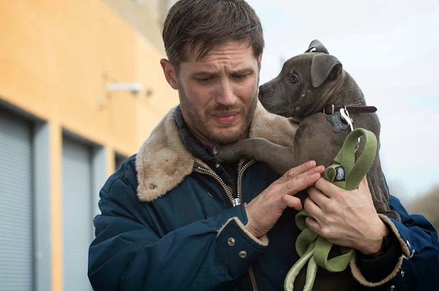The Drop Tom Hardy Rocco dog