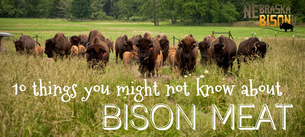 10 things you might not know about bison meat