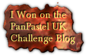 I Won at Pan Pastels - WOW